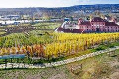 Troja castle, historical St. Claire vineyards, Troja Botanical G Royalty Free Stock Photos