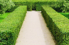 Troja Labyrinth Royalty Free Stock Images
