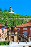 Troja Palace and vineyard in Prague. A view on a pictoresque vineyard from Troja Palace, Prague Royalty Free Stock Photos