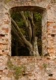 Trojborg在Tonder,丹麦附近的城堡废墟窗口  库存照片