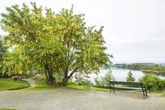 Troldhaugen Mening over het meer, waar de manor van Edvard Grieg wordt gevestigd Royalty-vrije Stock Afbeeldingen