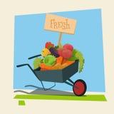 Trole com cultivo de Eco da loja da colheita do legume fresco ilustração stock
