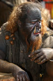 troll Стоковое Фото