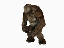 Troll Stock Images