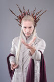 Troll. Thranduil, The Hobbit Stock Images