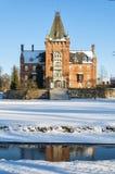 Trollenas nell'inverno fotografia stock libera da diritti