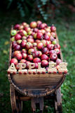 Trolley with apples Stock Image