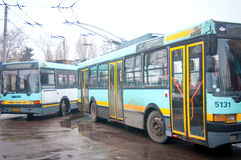 Trolley buses Stock Image