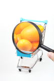 Trolley and magnifying glass Stock Image