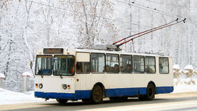 Trolleybus. Old white and blue trolleybus Stock Images