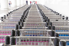 Trolleys luggage in a row in airport Stock Photography