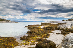 Trollholmsundet on the north-east cost of Finnmark Norway. Pilar Royalty Free Stock Image