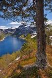 Trolltunga, Norvegia Immagini Stock Libere da Diritti