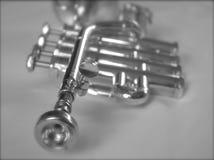 Tromba d'argento II fotografie stock libere da diritti