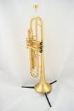 Trombeta do ouro Foto de Stock Royalty Free