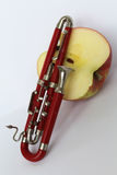 Trombone and half an apple Royalty Free Stock Photo