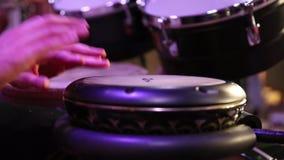 Trommel Hände eines Musikers, der an spielt, bongs Der Musiker spielt den Bongo Schließen Sie oben von der Musikerhand, die Bongo stock video footage