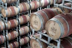 Trommels van wijn in het pakhuis Stock Foto's