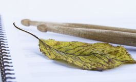 Trommelstöcke auf Anmerkung bedeckt, trockenes Herbstblatt lizenzfreie stockfotografie