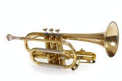 Trompet Stock Foto's