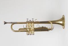 Trompet 2 royalty-vrije stock afbeelding
