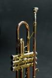 Trompet Royalty-vrije Stock Foto