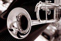 Trompeta blanco y negro Imágenes de archivo libres de regalías