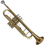 Trompeta de cobre amarillo Imagenes de archivo