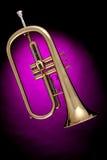 Trompeta de Flugalhorn aislada en color de rosa Fotografía de archivo