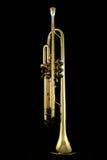 Trompeta del oro Fotografía de archivo
