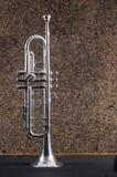 trompete stockbilder