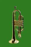 Trompete getrennt auf Grün stockbilder