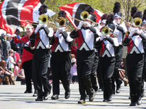 Trompeter an der Parade Lizenzfreie Stockfotos
