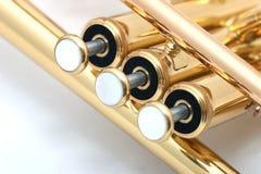 trompette d'or Images libres de droits