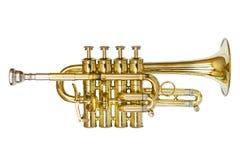 Trompette de petite flûte Photographie stock