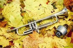 Trompette en parc d'automne Images libres de droits