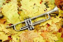 Trompette en parc d'automne Photo stock