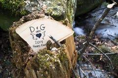 Tronçon d'arbre avec des initiales et des sentiments de coeur Photos libres de droits