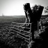 Tronçon d'arbre et porte - Ecosse rurale Photos libres de droits