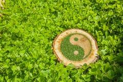Tronçon d'arbre sur l'herbe avec le symbole ying de yang Image libre de droits
