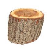 Tronçon en bois Photos libres de droits
