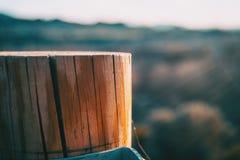 Tronçon en bois avec une lumière de coucher du soleil photographie stock libre de droits