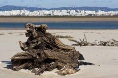 Tronçon sur la plage Photos stock