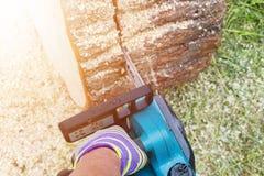 tronçonneuse Tronçonneuse en bois de coupe de mouvement Le bois de coupe d'homme avec a vu La poussière et mouvements Plan rappro Images libres de droits