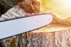 tronçonneuse Tronçonneuse en bois de coupe de mouvement Le bois de coupe d'homme avec a vu La poussière et mouvements Plan rappro Photos stock