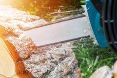 tronçonneuse Tronçonneuse en bois de coupe de mouvement Le bois de coupe d'homme avec a vu La poussière et mouvements Plan rappro Photographie stock libre de droits