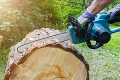 tronçonneuse Tronçonneuse en bois de coupe de mouvement Le bois de coupe d'homme avec a vu La poussière et mouvements Plan rappro Photo stock