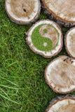 Tronçons d'arbre sur l'herbe avec le symbole ying de yang Images libres de droits