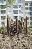Tronçons de buissons Images libres de droits