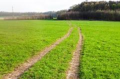 Tronçons de route de champ d'herbe verte Images stock